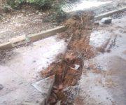 cut-drain-line